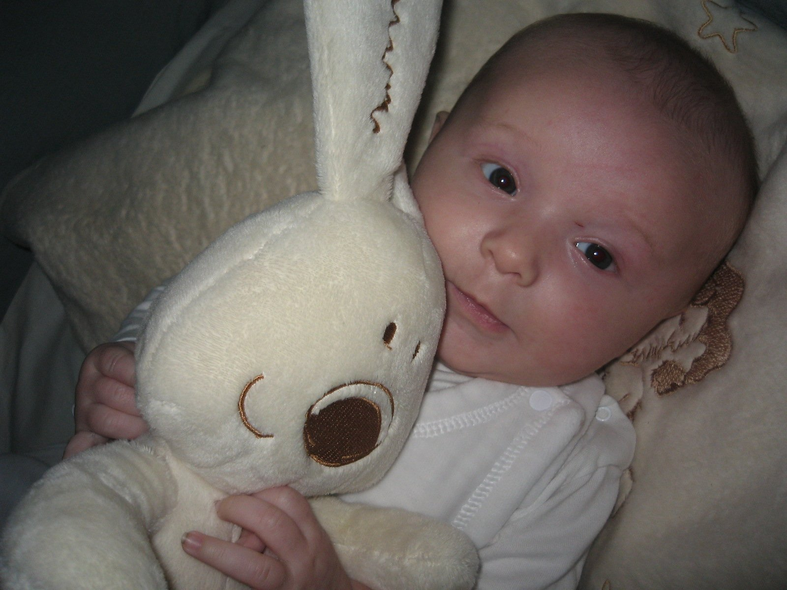 Gabriel et lapin blanc 1